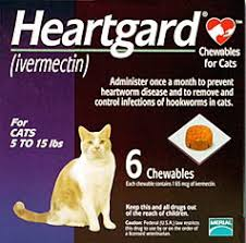 heartgard for cats ivermectin toxicity cat