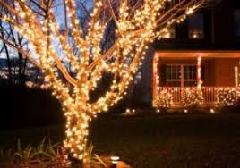 Buyers Guide For The Best Outdoor Christmas Lighting Concept Of Tree Lights