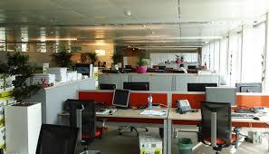 le bureau verte déco plantes vertes interieur bureau travail aménagement de