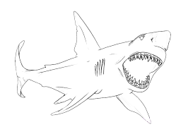 Pin Shark Clipart Colouring Page 5