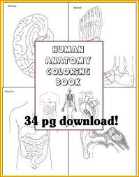 Human Anatomy Coloring Book For Any Study Of The Body And Its Systems