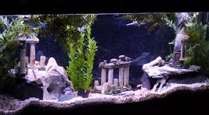 Spongebob Aquarium Decor Amazon by Batman Aquarium Fish Tanks Pinterest Aquariums Fish Tanks