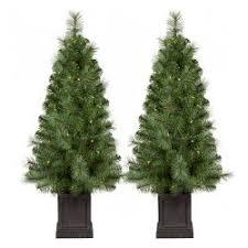 35ft Prelit Slim Artificial Christmas Tree 2pk Potted Douglas Fir Clear Lights