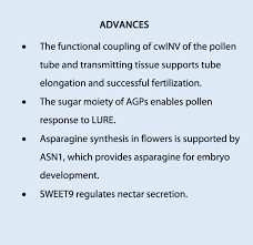 Floral Metabolism of Sugars and Amino Acids Implications for