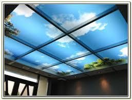 2x4 Drop Ceiling Tiles by Decorative Drop Ceiling Tiles 2x4 Tiles Home Decorating Ideas