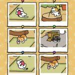 Neko Atsume Kitty Collector Ultimate Guide To Get Rare Cats