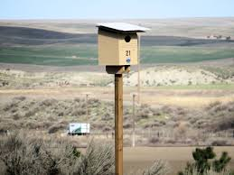 Barn Owls See A Housing Boom In Walla Walla, Washington | Audubon Barn Owl Boxes And Breeding Success Nture Lakeland How To Erect A Owl Nestbox In Tree Youtube Bisham Group For Bbowt Rerves Wildlife Home Plans Audubon Field Guide House Modern Cepermans Blog Building Box Bird L Duhallow Raptor Cservation Project Ring Shows Value Boxes Attention Barn Owls Custom Bungalows Available Now Sheltons Piedmont Iniative New Hope Society Sustainability Action Alexandra District Energy Utility Adeu