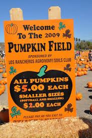 Cal Poly Pumpkin Patch San Luis Obispo by Creative Sparks October 2009