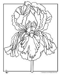 Flower Coloring Pages Spring Flowers Iris Page Fantasy Jr