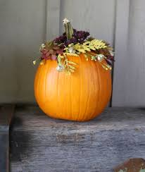 Preserve Carved Pumpkin Forever by Lily U0026 Val Living Page 22 Of 45 A Pretty Place For All Who