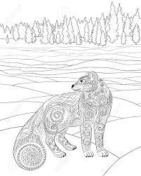 Zorro ártico Ilustración Vectorial Ilustraciones Vectoriales Clip