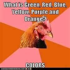 advice animals memes Animal Memes Anti Joke Chicken