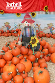 Best Pumpkin Patch Near Corona Ca you are invited to tarbell u0027s yorba linda pumpkin patch