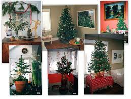What Is The Best Christmas Tree by O Christmas Tree O Christmas Tree Noticed In Nova Scotia