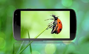 Video Player for All Format apk screenshot