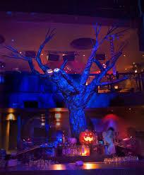 Singing Pumpkins Projector Setup by Halloween Themed Work David Andora