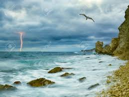 Seagull Over Ocean Comes Nearer A Thunder Storm Towards The Coast From Rocks And