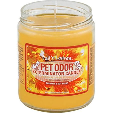 Pet Odor Exterminator Candle - Fall'N Leaves