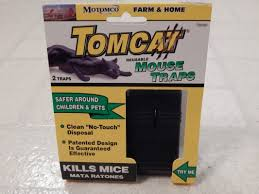 tom cat mouse trap best mouse trap which should you use