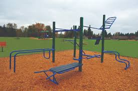 Jungle Gym Outdoor Fitness Equipment | StayFIT Systems Our Kids Jungle Gym Just After The Lightning Strike Flickr Backyards Mesmerizing Colorful Pallet Jungle Gym Kids Playhouse Backyard Gyms Home Interior Ekterior Ideas Fascating Plans Modern Ohana Treat Last Minute August Special Vrbo Outdoor Fitness Equipment Stayfit Systems Gyms For Outdoor Plans Free Downloads Junglegym Dreamscape Swing Set 3 Playset Eastern Speeltoren Barn Bridge Module Tuin Ideen Wooden Playsets L Climb Playground