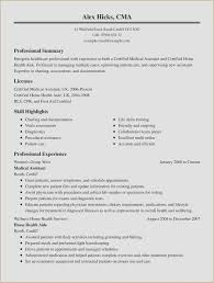 Resume Summary Examples For First Job Beautiful How To Type A