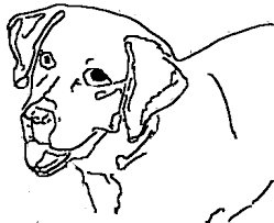 Dog Free Coloring Sheets For Kids