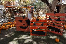 Irvine Pumpkin Patch Tanaka by Creating Spooktacular Memories At The Irvine Park Railroad Pumpkin