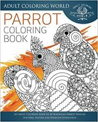 Amazon Parrot Coloring Book An Adult Of 40 Zentangle Designs For Bird Nature And Wildlife Enthusiasts Animal Books