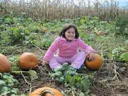 Best Pumpkin Picking Bergen County Nj by Nj Fall Fun Your Complete Guide To Nj Playgrounds