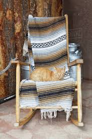 Cat On A Wooden Rocking Chair Stock Photo