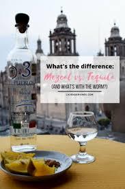 Headless Horseman Pumpkin Spice Whiskey by Best 25 Mezcal Alcohol Ideas On Pinterest Garrafa De Tequila