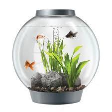 biorb baby aquarium 4 gallons animalerie en ligne animaux en