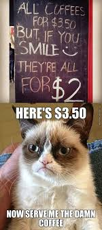 cat coffee grumpy cat wants his damn coffee grumpy cat your meme
