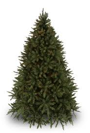 Christmas Tree Seedlings Wholesale by Douglas Fir Unlit Tree Christmas Lights Etc