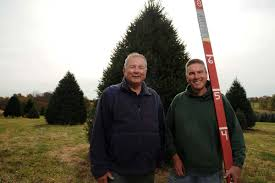 Xmas Tree Farms Albany Ny by Pa Christmas Tree Headed For White House