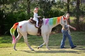 Pumpkin Picking In Nj Monmouth County by Acres Away Llc Kids U0027 Hand Led Pony Ride To Pumpkin Patch U0026 Candy