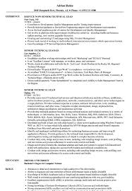 Download Senior Technical Lead Resume Sample As Image File