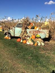 Pumpkin Farms Southern Illinois by Pumpkin Patches U0026 Apple Orchards