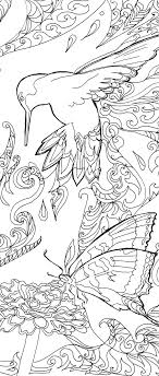 Printable Coloring Pages Adult Book Hummingbird Colibri Art Hand Drawn