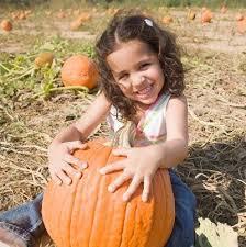 Maryland Pumpkin Patches Near Baltimore by 12 Best Meglátogatandó Helyek Images On Pinterest Logos Google