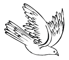 777x680 Drawing Dove Cliparts