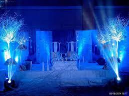 Jayella Wedding With Disney Frozen Movie Theme 2