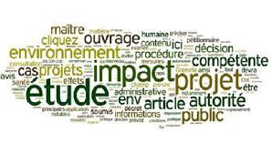 cabinet international npm formation etude conseil la