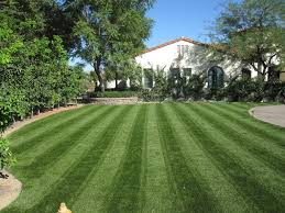 Landscape Artificial Grass Photo Gallery By Global Syn Turf ... Long Island Ny Synthetic Turf Company Grass Lawn Astro Artificial Installation In San Francisco A Southwest Greens Creating Kids Backyard Paradise Easyturf Transformation Rancho Santa Fe Ca 11259 Pros And Cons Versus A Live Gardenista Fake Why Its Gaing Popularity Cost Of Synlawn Commercial Itallations Design Samples Prolawn Putting Pet Carpet Batesville Indiana Playground Parks Artificial Grass With Black Decking Google Search