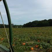 Pumpkin Picking Nj Colts Neck by Eastmont Orchards 120 Photos U0026 38 Reviews Fruits U0026 Veggies