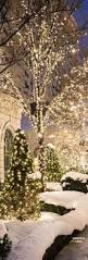 Prelit Christmas Tree That Puts Up Itself by 397 Best Fairy Lights Images On Pinterest Twinkle Lights