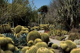 Guide To The Huntington Library & Botanical Gardens  CBS Los Angeles