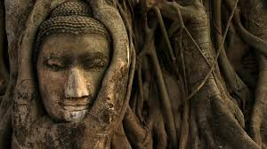 Buddha 1920x1080 Shaunte Wigington