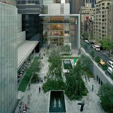the museum of modern moma new york city all you need to