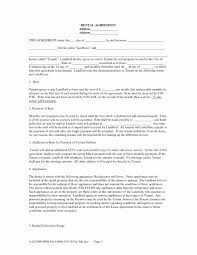 Free Printable Resume Forms Luxury Standard Terms And Conditions For Services Template Fresh Healthcare